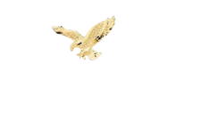 ONE ROQ Vodka® Club